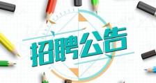 2021届毕业生招聘公告(图文)